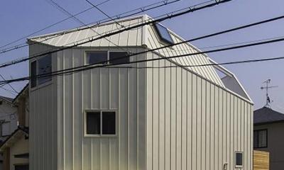 宝塚の家:大阪の注文住宅 地下1階地上3階建て住宅 (外観)