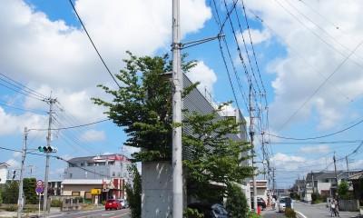三角地で開放的に暮らす家|K HOUSE (外観|南側先端部分)