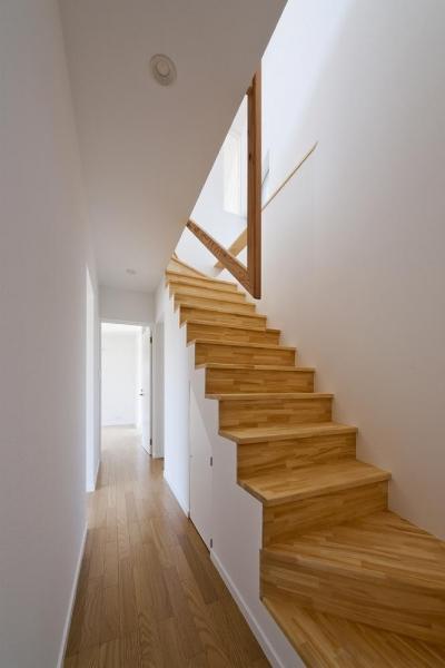 朝倉の家 階段 (朝倉の家)