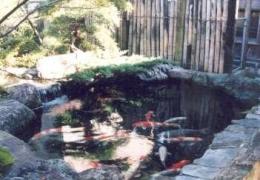 坂東邸 (鯉が泳ぐ池)
