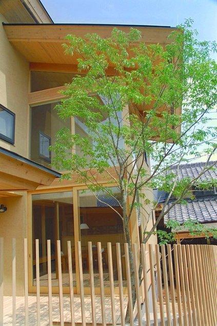 稲荷木の家の写真 シンボルツリー