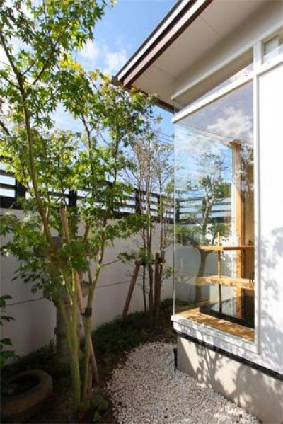 大屋根の家 (和室側の庭)