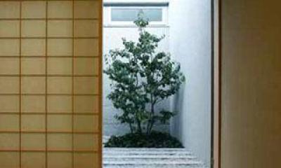 和室|壁層の家