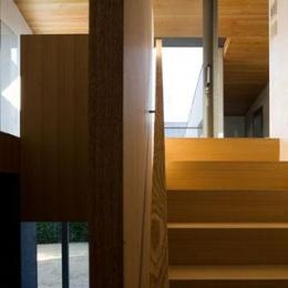 壁層の家 (階段)