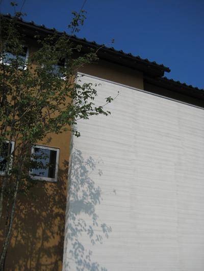 田園に建つ町屋の写真 外観