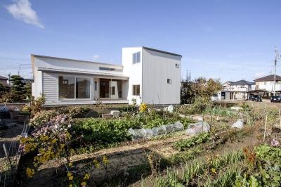 江南の住宅 (白い外観-背面)