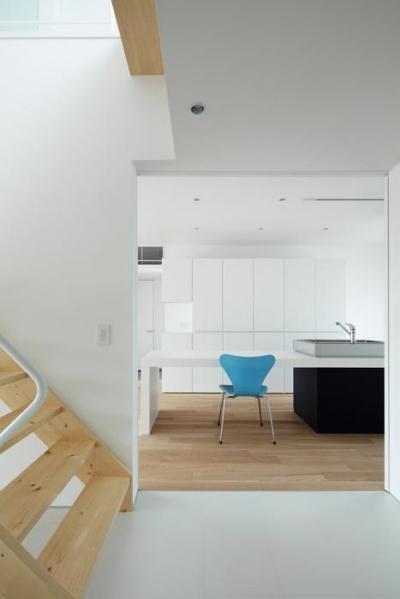 階段室からキッチンを見る(撮影:Makoto Yasuda) (『ループ&ループ』建具の開閉によって行き止まりをつくらない)