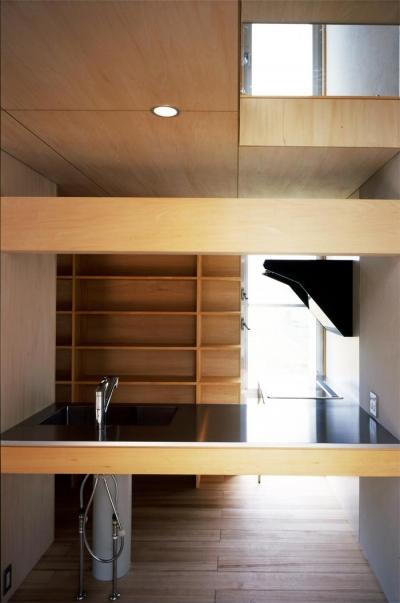 おおつ野の家 (キッチン(撮影:齋藤さだむ))