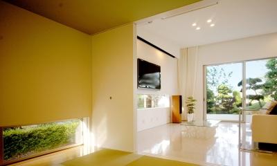 T-House <ガラスルーバーの家> (畳スペースからリビングを見る1)