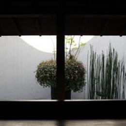 ギャラリーYui (ギャラリー内部から庭を見る)