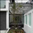 大徳寺の家の写真 前庭
