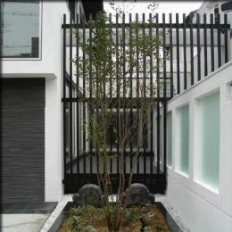 大徳寺の家 (前庭)