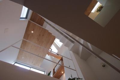 階段 1階からの見上げ (スキップフロアがつくる快適空間 (白金の家))