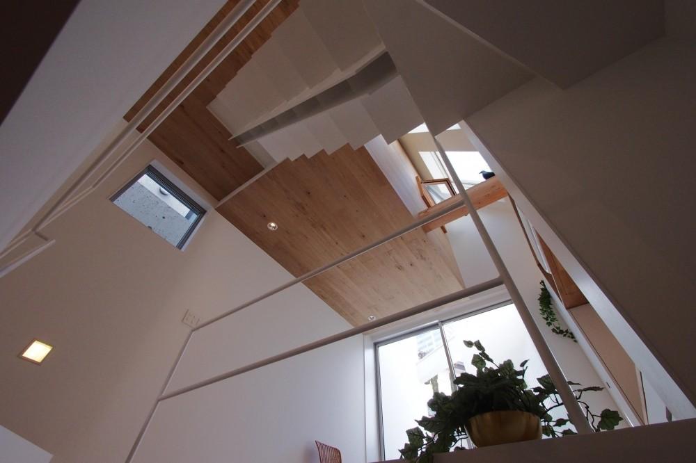スキップフロアがつくる快適空間 (白金の家) (階段 1階からの見上げ)