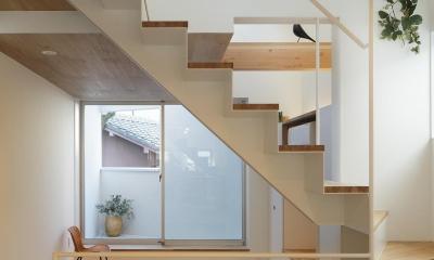スキップフロアがつくる快適空間 (白金の家) (ダイニングより階段越しにリビングを見る)