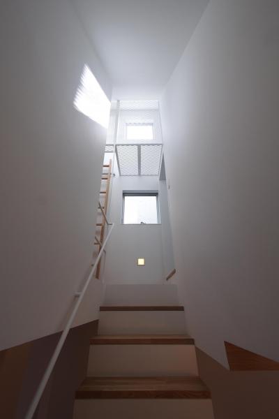 階段(3階ヘ) (スキップフロアがつくる快適空間 (白金の家))