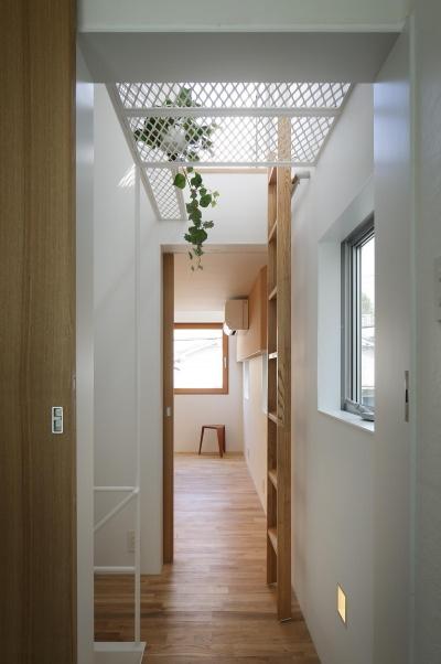 キャットウォークへの梯子 (スキップフロアがつくる快適空間 (白金の家))
