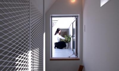スキップフロアがつくる快適空間 (白金の家) (キャットウォークよりフーフテラスを見る)