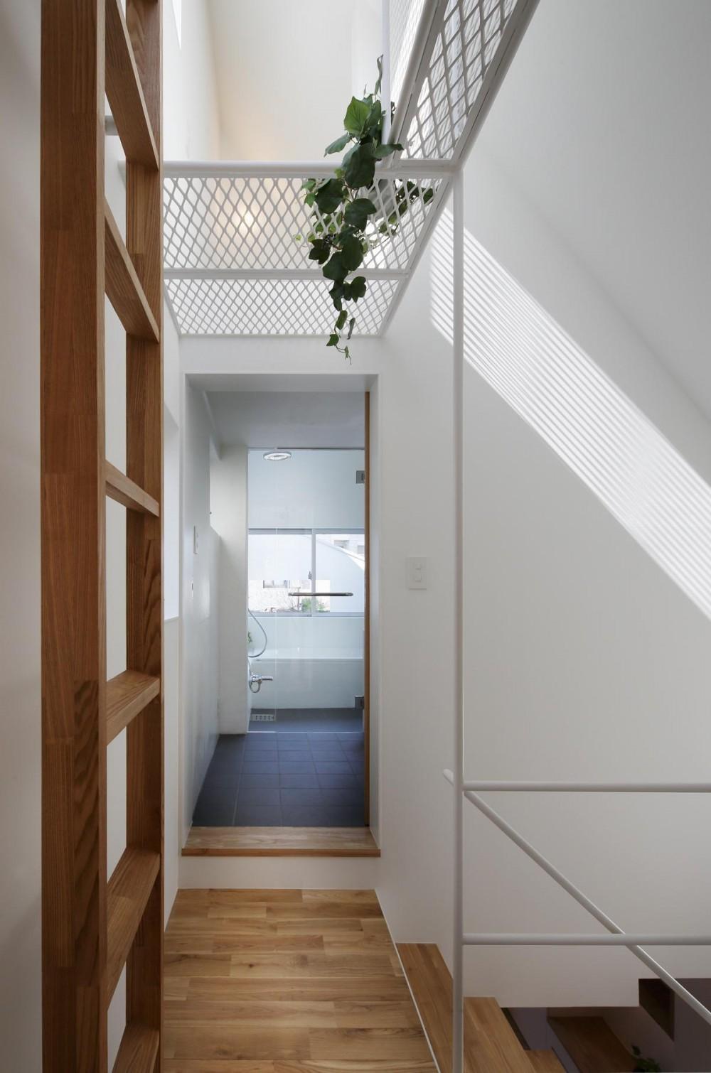 スキップフロアがつくる快適空間 (白金の家) (キャットウォーク下より洗面・浴室を見る)