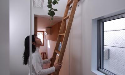 スキップフロアがつくる快適空間 (白金の家) (キャットウォーク ー 梯子)
