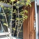 囲みの家の写真 玄関