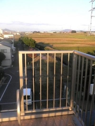 屋外テラス (オープンキッチンと本の家)
