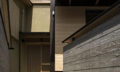 花園の家/スケルトン・リノベーションで耐震・断熱改修も行った和風の住まい (玄関アプローチ(撮影 : 母倉知樹))