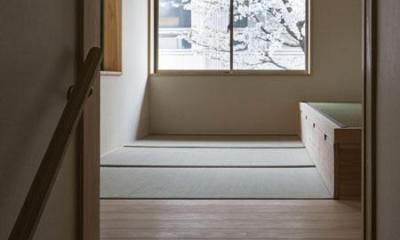 花園の家/スケルトン・リノベーションで耐震・断熱改修も行った和風の住まい (和室2(撮影 : 母倉知樹))