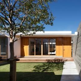 中庭のある家~光と風の通るガレージハウス~ (中庭を通る玄関アプローチ(撮影:中村絵))