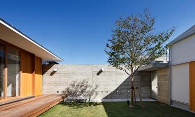 中庭のある家~光と風の通るガレージハウス~ (中庭を通る玄関アプローチ2(撮影:中村絵))