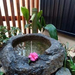 南浅田の家~大きな中庭のある家~ (和室から見える水庭)