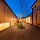 南浅田の家~大きな中庭のある家~の写真 中庭-夜景