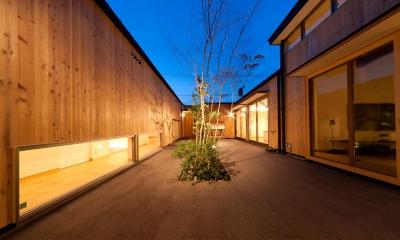 南浅田の家~大きな中庭のある家~ (中庭-夜景)