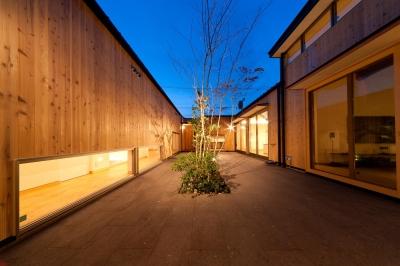 中庭-夜景 (南浅田の家~大きな中庭のある家~)