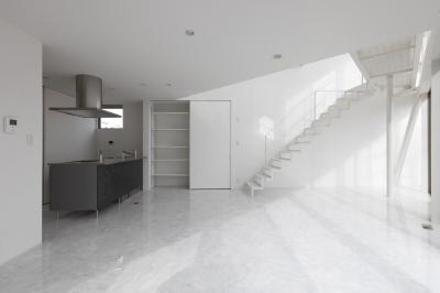 三角プランの家~斜め線で室内と室外に分かれる家~ (キッチン(撮影:加斗タカオ))