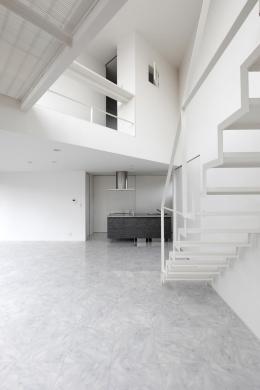 三角プランの家~斜め線で室内と室外に分かれる家~ (キッチン-正面(撮影:加斗タカオ))
