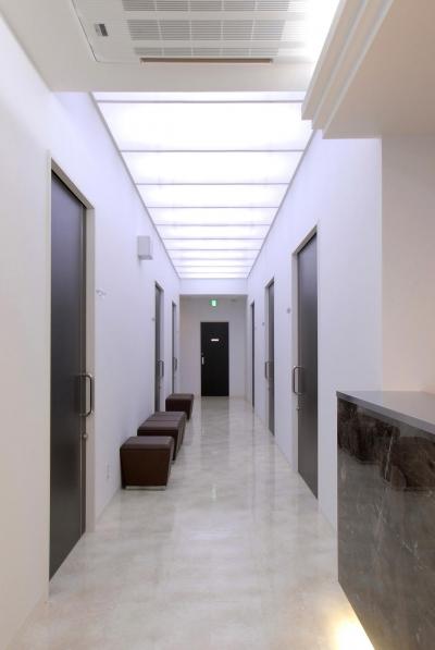 県立大学前クリニック~低く構えた シンプルなクリニック~ (クリニック廊下)