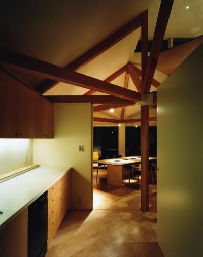 キッチン (石神井の住宅 古稀庵)