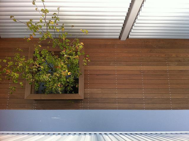 建築家:大塚泰子「光遊の家」