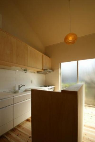キッチン (楠葉の家)