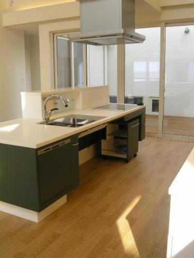 対面式キッチン (「車椅子対応住宅」 -モビリティハウスの試み-)