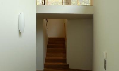 円山西町の家 (玄関ホール)