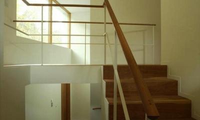 円山西町の家 (階段)