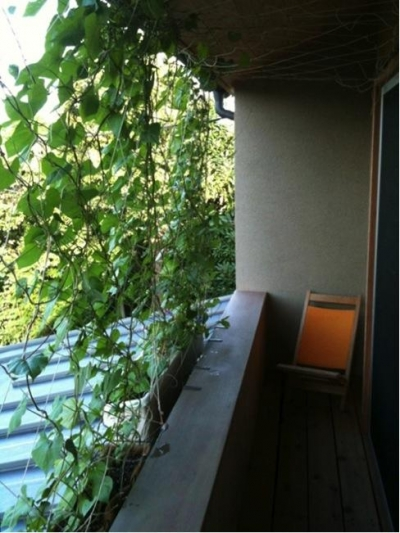 2階バルコニー (寒川の家)