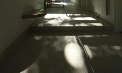 玄関(撮影:Adachi Osamu)|大沼 森の家