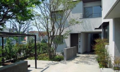 Apartment-Fu・路地状敷地の長屋建て集合住宅 (集合住宅外観2)