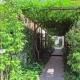 緑のトンネル (Apartment-Fu・路地状敷地の長屋建て集合住宅)
