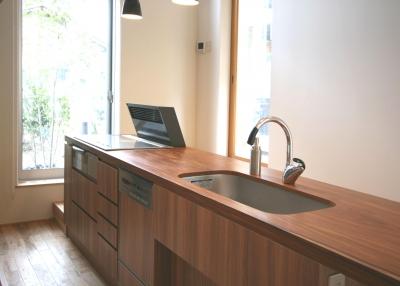 木立の家 (キッチン)