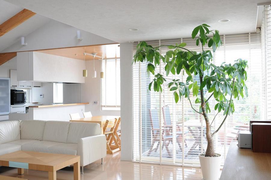 世田谷I邸-1の写真 2階リビング-2