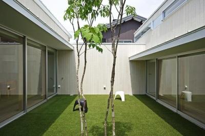 中庭 (豊橋の家)